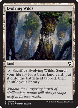 Evolving Wilds