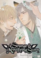 Strange & Mystifying Story Gn Vol 05 (Mr) (STL098924)