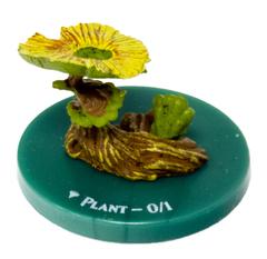 Plant - 05/28 - Common