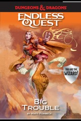 Big Trouble: An Endless Quest Book SC