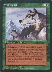 Aspect of Wolf - German