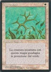 Green Ward - Italian