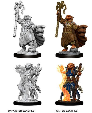 Nolzurs Marvelous Miniatures - Female Dragonborn Sorcerer