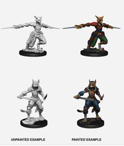 Nolzurs Marvelous Miniatures - Female Tabaxi Rogue