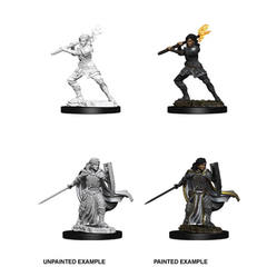 Nolzur's Marvelous Miniatures - Female Human Paladin