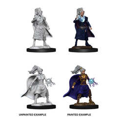 Nolzur's Marvelous Miniatures - Female Human Sorcerer