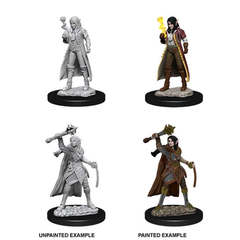 Nolzur's Marvelous Miniatures - Female Elf Cleric