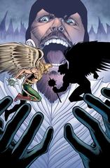 Hawkman #17 Yotv (STL133874)
