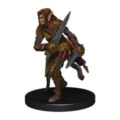 Elf Ranger (Sword Variant)