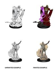 Nolzur's Marvelous Miniatures - Lich & Mummy Lord