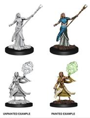 Nolzur's Marvelous Miniatures - Female Elf Sorcerer