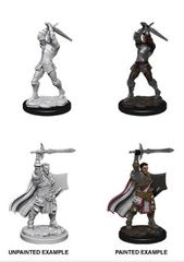 Nolzur's Marvelous Miniatures - Male Human Paladin