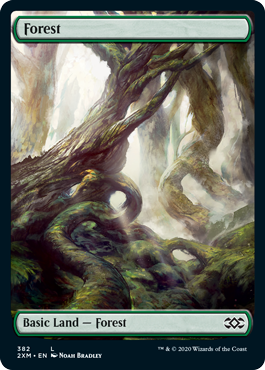 Forest (382) - Foil