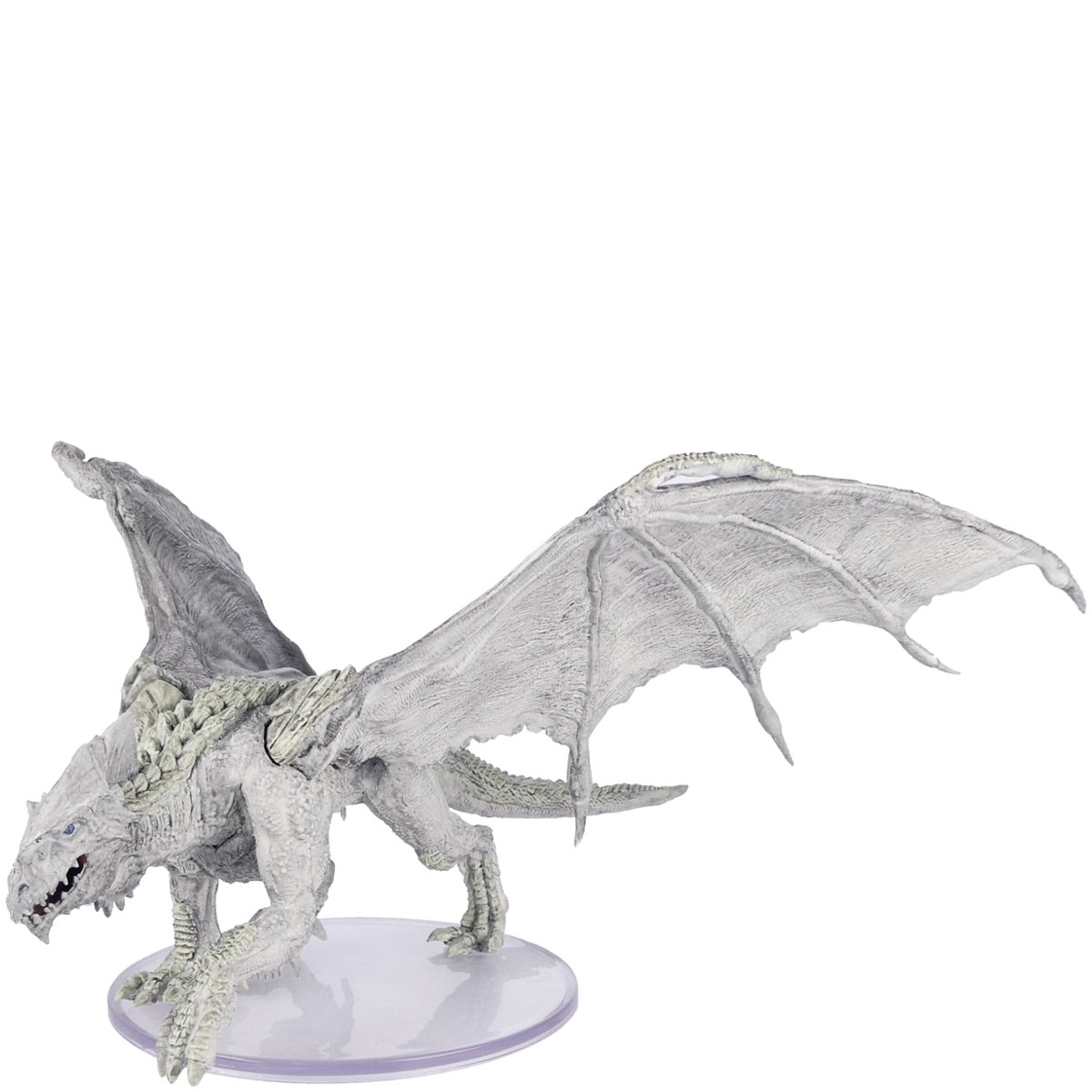 Young Adult White Dragon