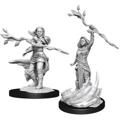D&D Nolzur's Marvelous Unpainted Miniatures: W14 Female Human Druid