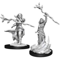 D&D Nolzur's Marvelous Unpainted Miniatures: W14 Female Human Druid