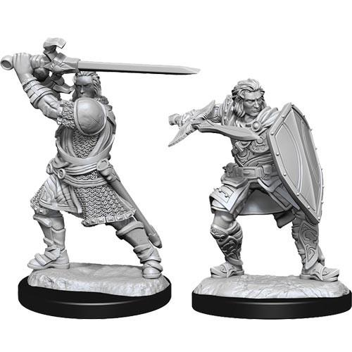 D&D Nolzurs Marvelous Unpainted Miniatures: W14 Male Human Paladin