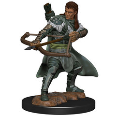 D&D Premium Painted Figure: W4 Male Human Ranger