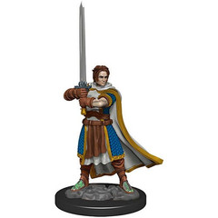 D&D Premium Painted Figure: W4 Male Human Cleric