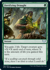 Fortifying Draught - Foil