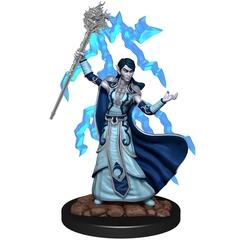 D&D Premium Painted Figure: W6 Elf Wizard Female