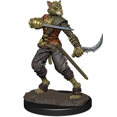 D&D Premium Painted Figure: W6 Tabaxi Rogue Male
