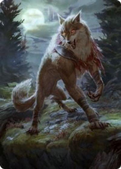 Arlinn, the Moons Fury (2/81) Art Card