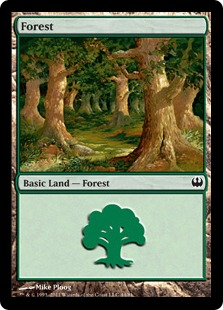 Forest (44)