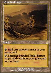 Petrified Field - Foil