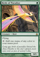 Birds of Paradise - Foil on Channel Fireball