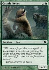 Grizzly Bears - Foil
