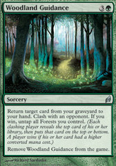Woodland Guidance - Foil