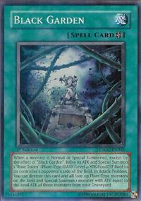Black Garden - CSOC-EN048 - Super Rare - Unlimited Edition