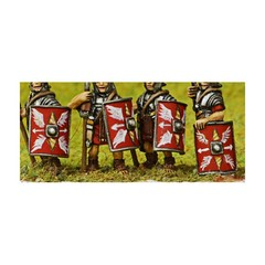 Roman Rectangular shield (Early Imperial Roman) (151004-0121)