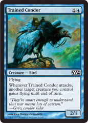Trained Condor - Foil