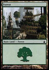 Forest (304) - Foil