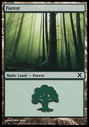 Forest (381)