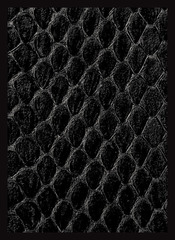 Dragon Hide Art Sleeves Black (50)
