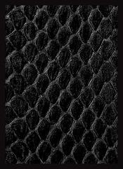 Dragon Hide Art Sleeves Black (50)