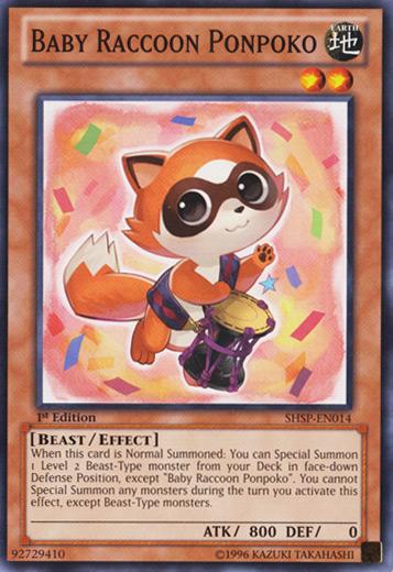 Baby Raccoon Ponpoko - SHSP-EN014 - Common - Unlimited Edition